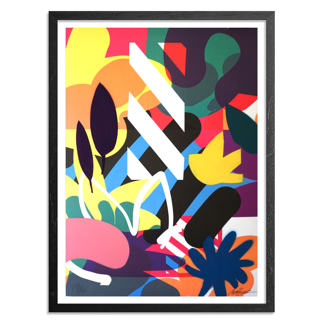 Maser Art - 13 of 15 - Habitats - Hand-Painted Edition