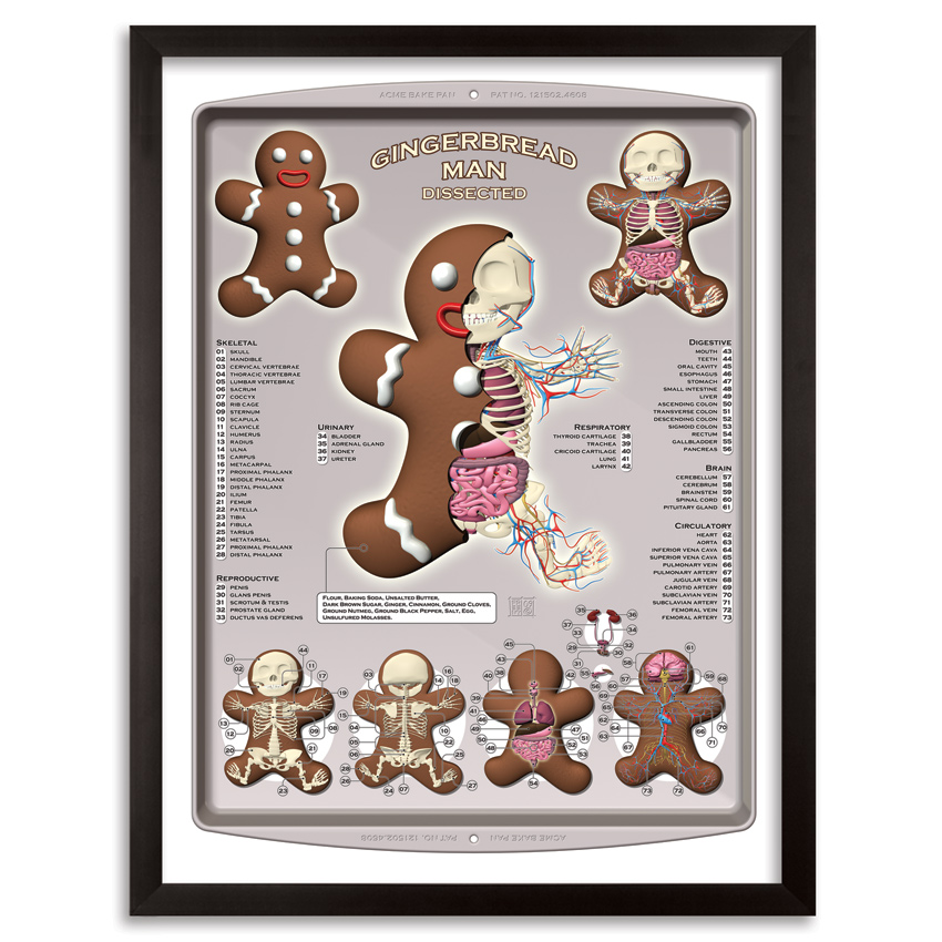 Jason Freeny Art Print - Gingerbread Man Dissected