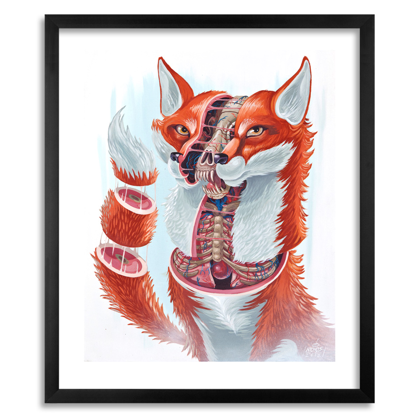 Nychos Art - Dissection of a Fox - Framed