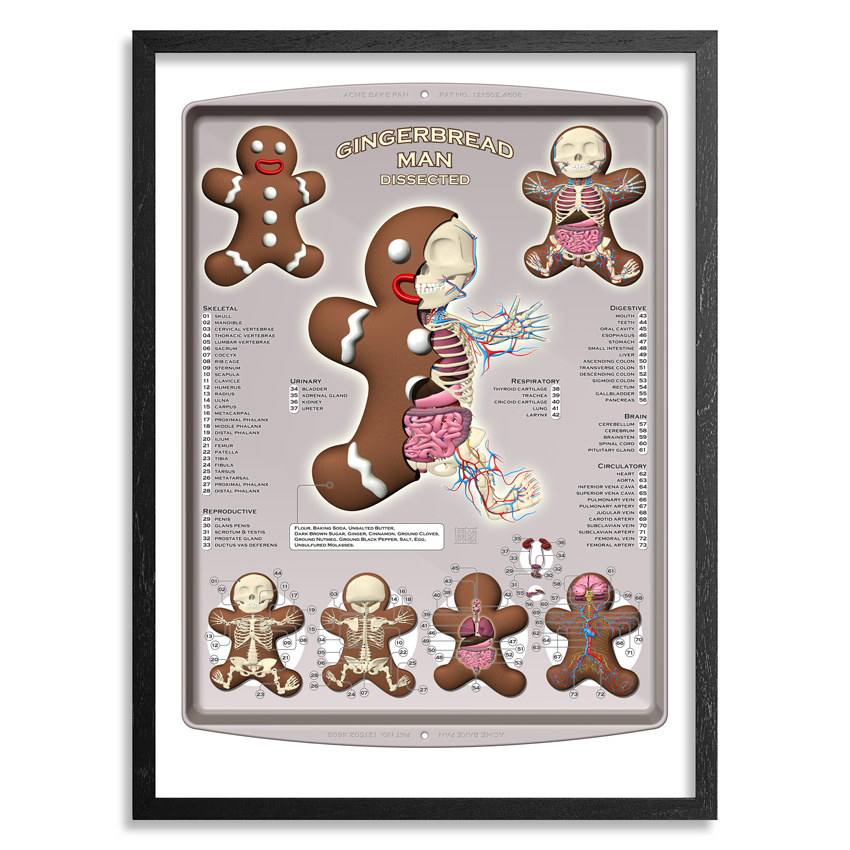 Jason Freeny Art - Gingerbread Man Dissected - Framed