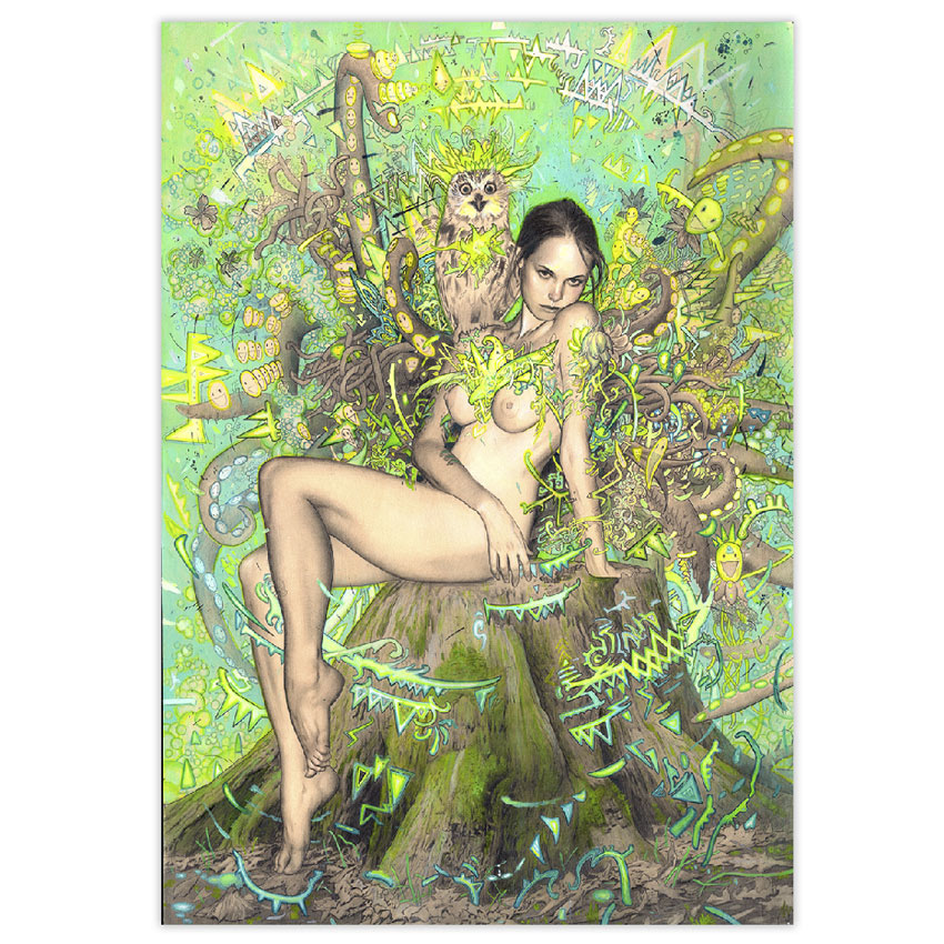 Rodrigo Luff Original Art - Tree Nymph