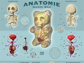 Art Print by Jason Freeny - Anatomie