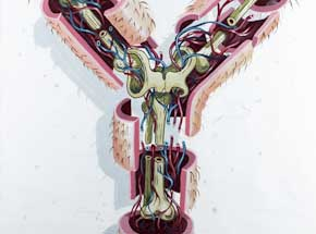 Original Art by Nychos - Dissection Of The Letter Y