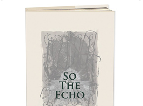 Book by Brandon Boyd - So The Echo