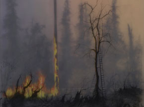 Original Art by Brook Salzwedel - No So Wild Fire