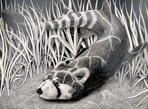 Original Art by Craig Tapecat McCudden - Red Panda