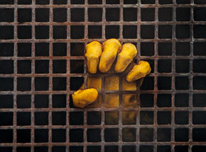 Original Art by Dan Witz - One Glove (Sq Grate)