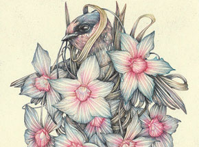 Original Art by Marco Mazzoni - The Immodest